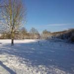 bewegung-im-schnee