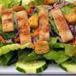 salat-erfahrungsbericht