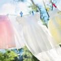 clothesline-804812_640